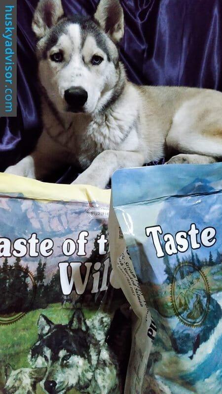 Siberian husky food