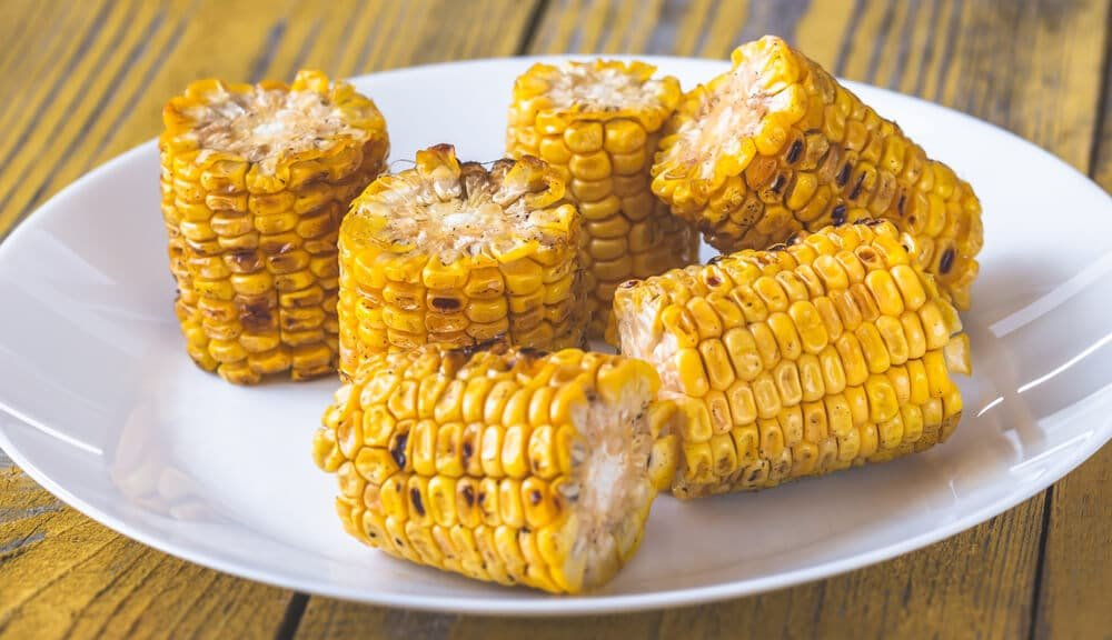 can dogs eat grilled corn