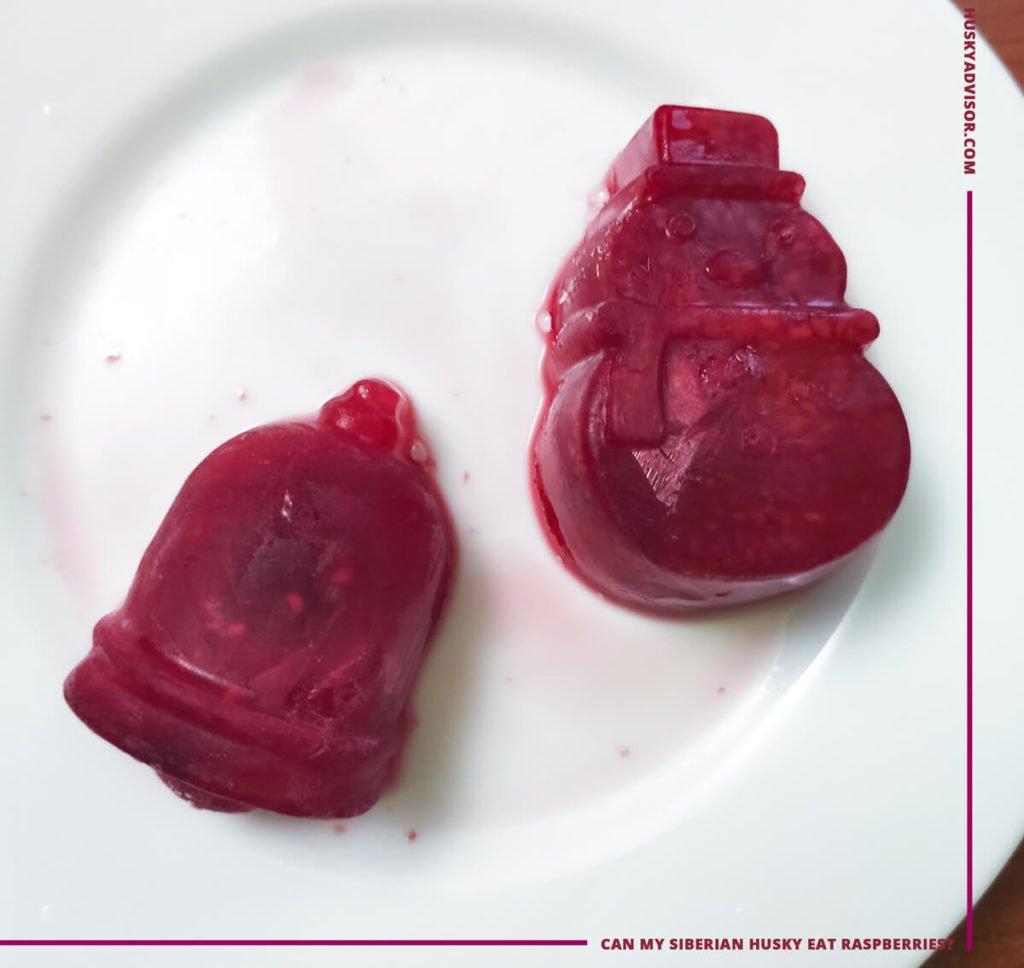 frozen raspberry treats for dogs